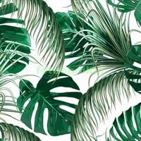 Тропические ветки