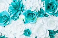 Белые и голубые цветы