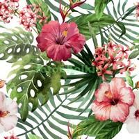 Узор с цветами тропиков