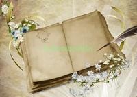 Старая пустая книга