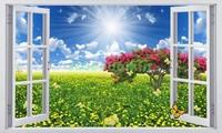 Окно с видом на поле