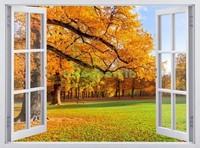 Окно с видом на осеннее дерево