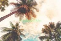 Верхушки пальм