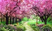Сад с деревьями сакуры