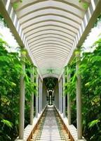 Арка с колоннами в саду