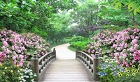 Мостик в саду с цветами