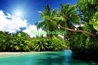 Тропическая гавань