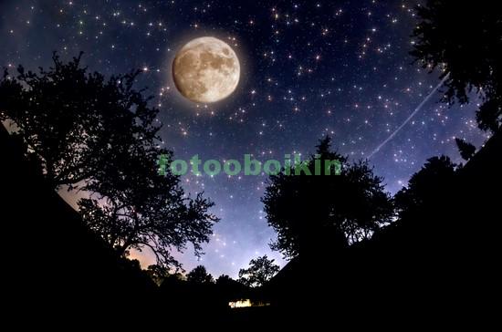 Ночь в Африке