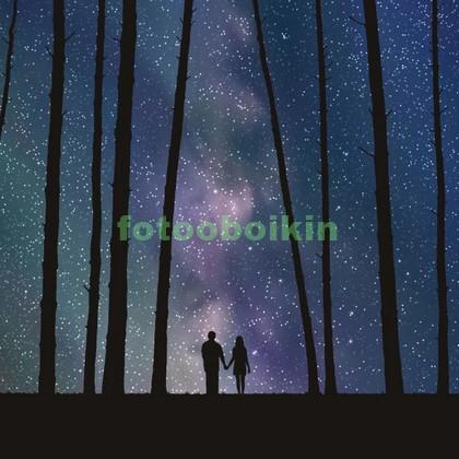 Звездное небо в лесу