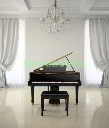 Рояль в зале