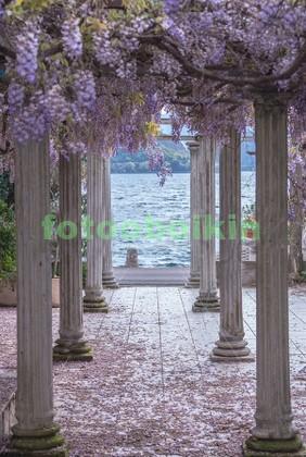 Арка в цветах с видом на море