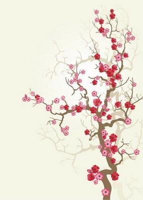 Ветка вишни