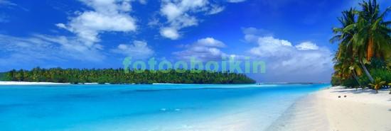Панорама море песок пальмы