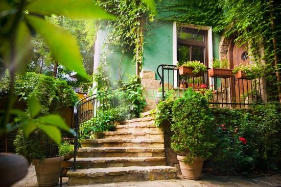 Солнечный зеленый дворик