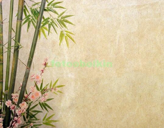 Бамбук с веткой сакуры
