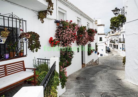 Белая улица с цветами