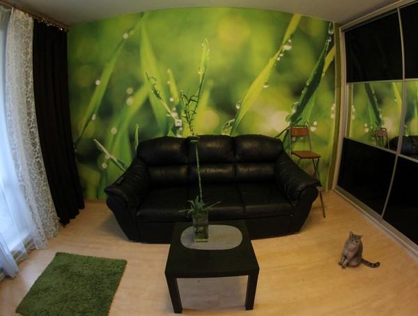 Фотообои в комнате