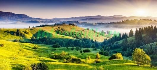 Зелёные луга