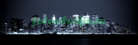 Панорама ночного города ч\б