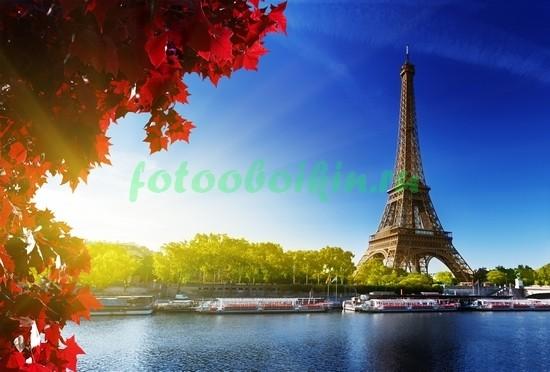 Красный клен на фоне Эйфелевой башни