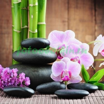 орхидея с бамбуком и гиацинтом