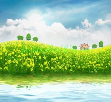 Берег реки в цветах