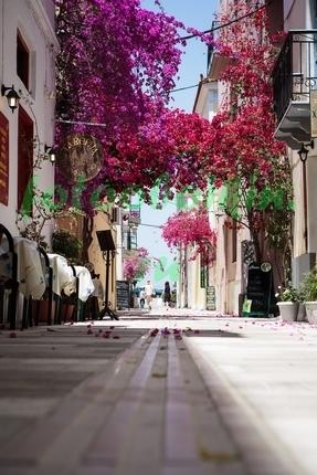 Фотообои Улочка с розовыми цветами
