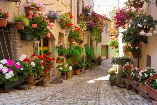 Фотообои Красивая улочка в Италии