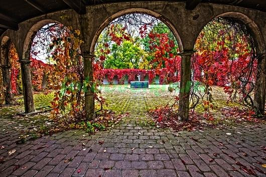 Арки с видом на сад