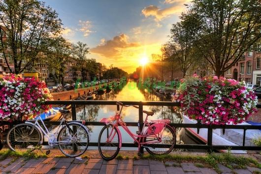 Велосипед в цветах