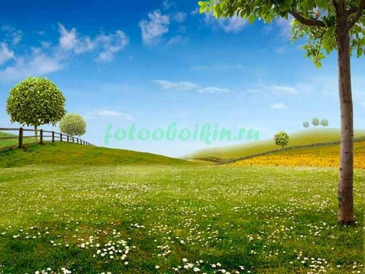 Зеленый луг 3Д