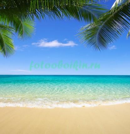 Тропический пляж 3Д