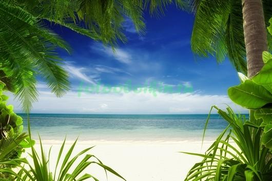 Пляж с пальмами 3Д