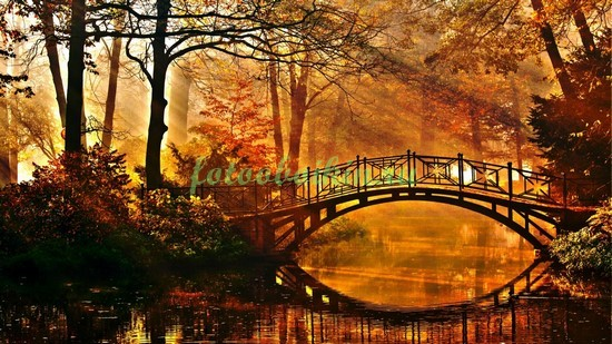 Мостик осенью