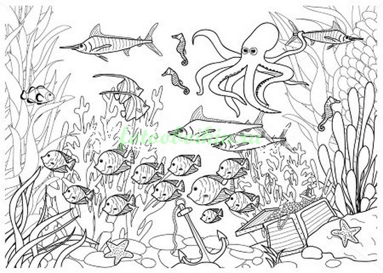 Подводное царство