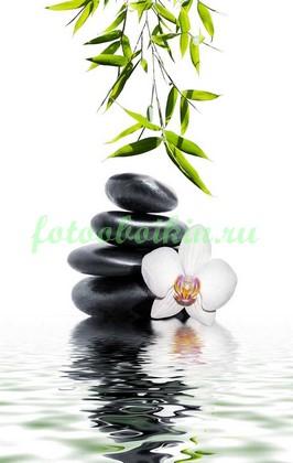 Черные камни с орхидеей