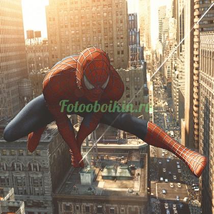Человек паук на закате