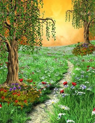 Тропинка в цветущем поле