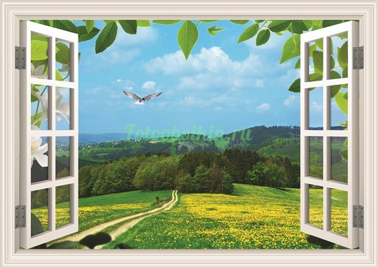 Окно с видом на поле и деревья