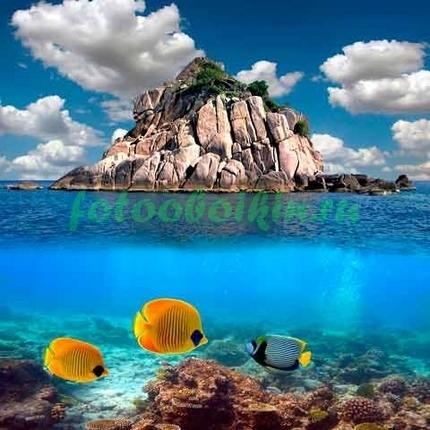 Рыбки около острова
