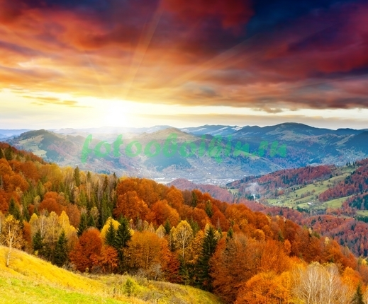 Осенний лес в горах