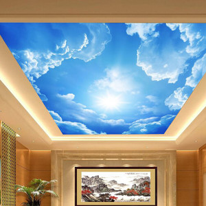3d-art-on-cieling-ideas-11