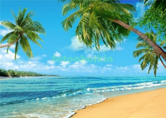 Фотообои Пальмы пляж море