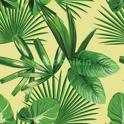 Листья в тропиках