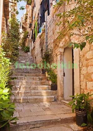 Фотообои Уличная лестница