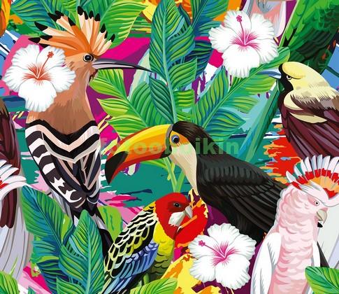 Фотообои Тропические птицы