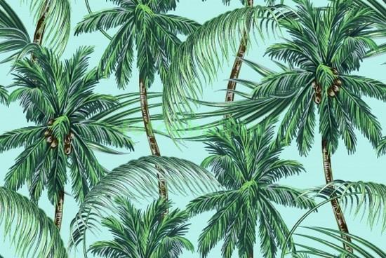 Фотообои Пальмы на голубом фоне