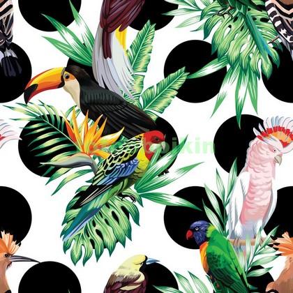 Фотообои Птицы и кружочки