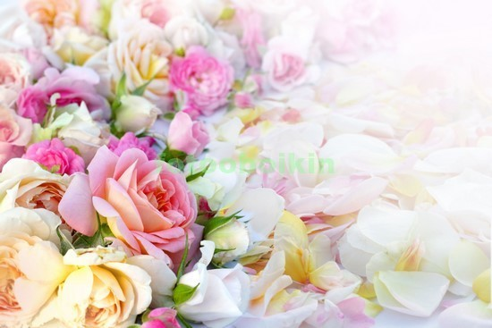 Фотообои 3D букет роз