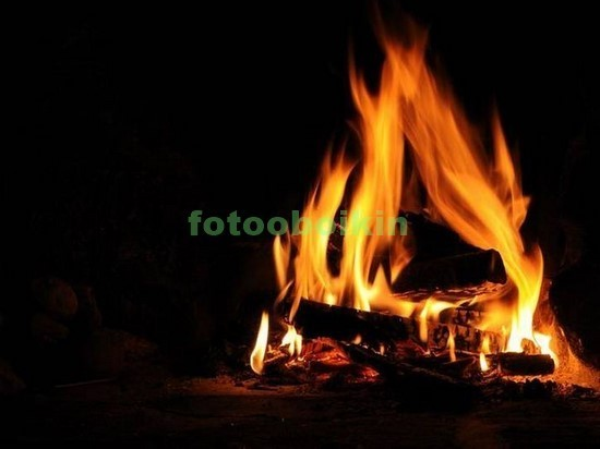 Фотообои Огонь в очаге